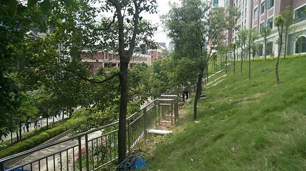 广东广州华立科技学院不锈钢护栏安装工程案例